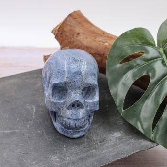 Crâne en Corail bleu