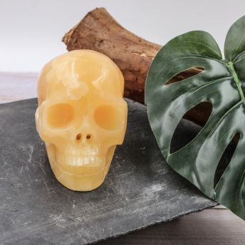 Crâne en Calcite jaune