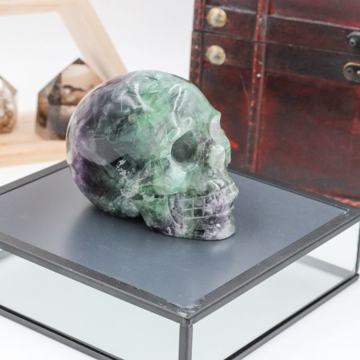 crâne fluorine