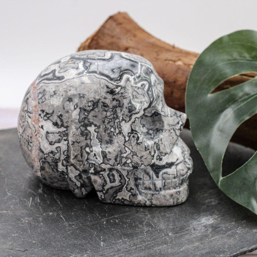 Crâne en Jaspe Picasso